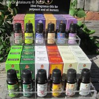 Fragrance Oils - Kamini Fragrant Oils