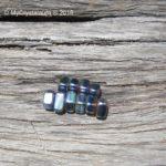 Rainbow Magnetic Hematite